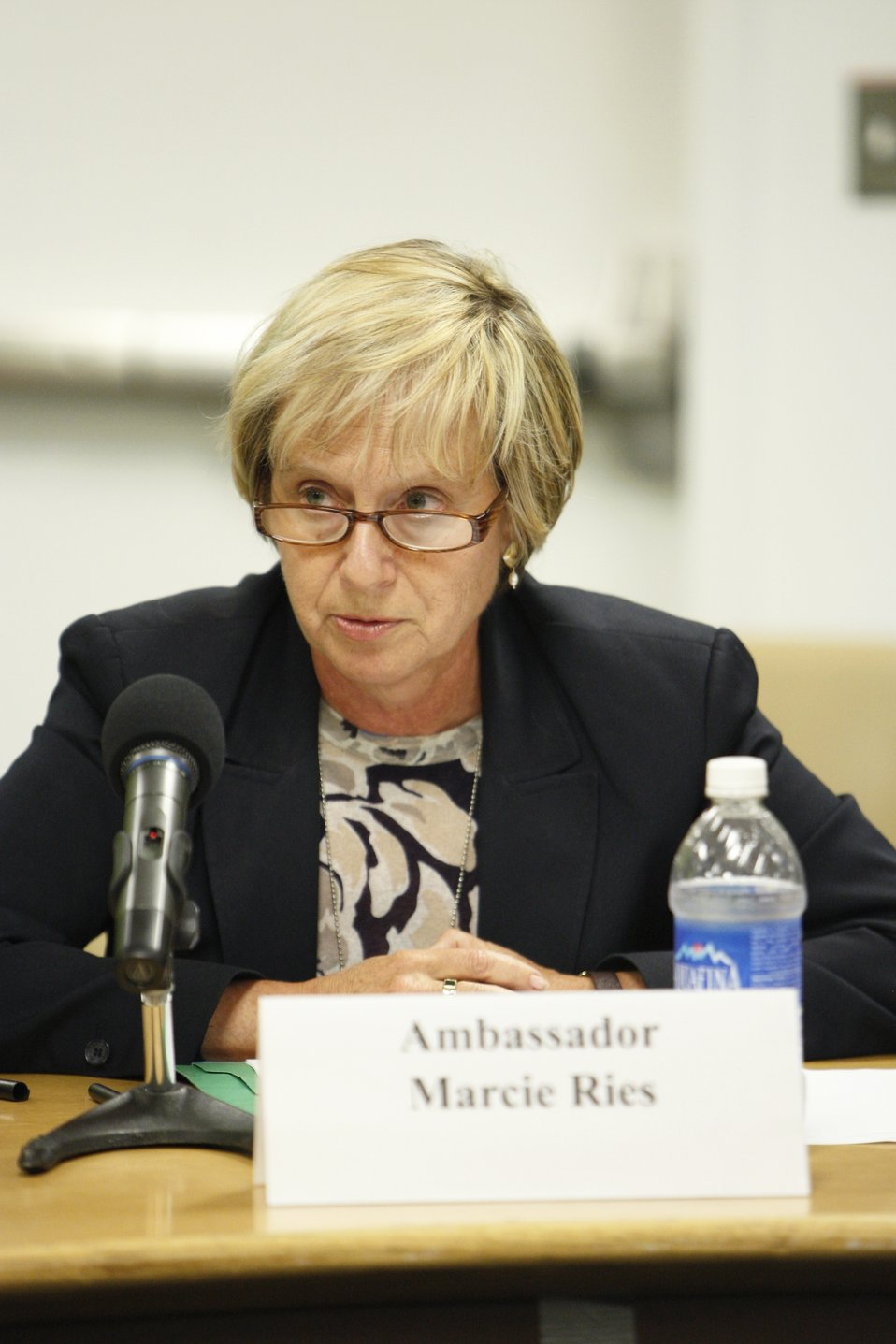 Deputy Assistant Secretary Ries Participates in a High Level Workshop Against Nuclear Tests