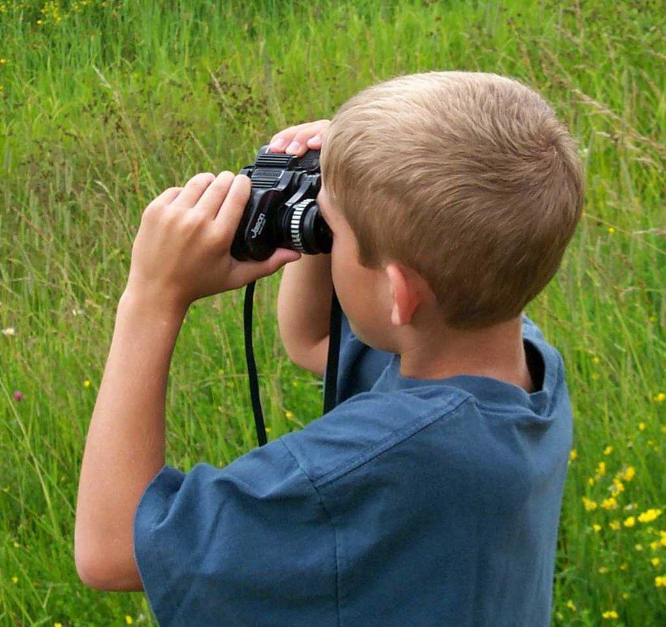 wildlife-viewing