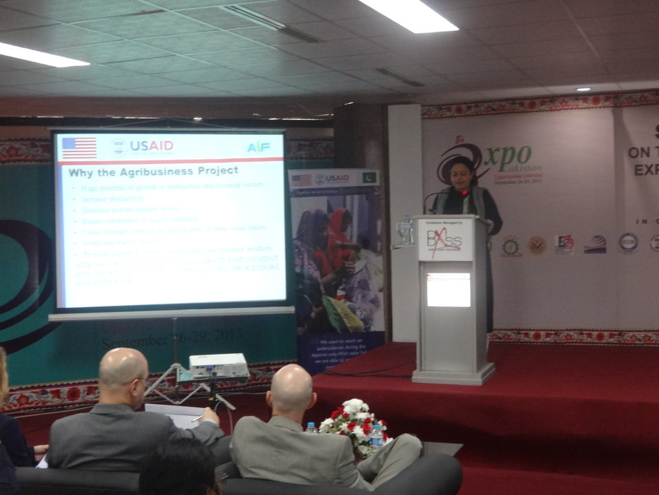 The Agribusiness Project, Presentation at Conference, TDAP Expo, Karachi, September 27, 2013 (11)