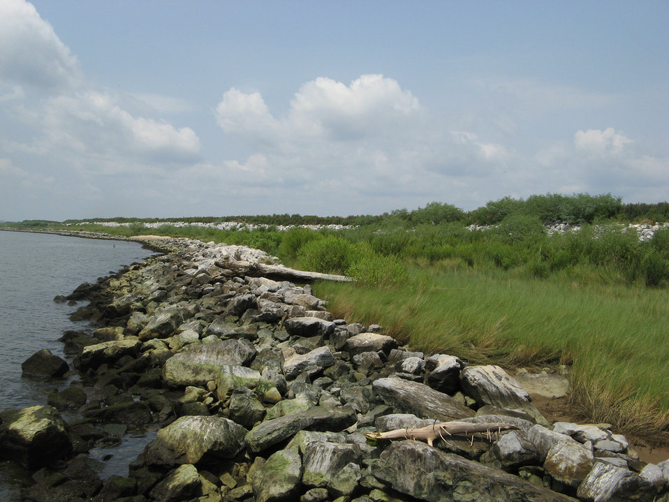 Alabama Gaillard Island Shore, Michael Assenmacher, USFWS