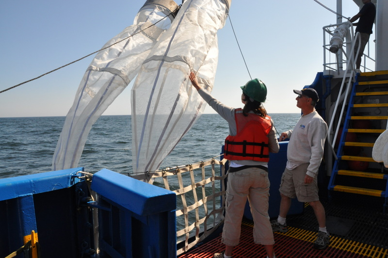 August 2009, Sending out the plankton tow nets