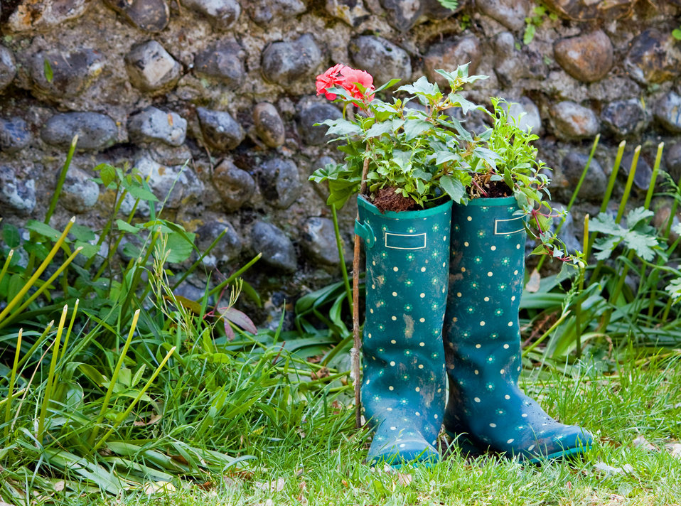 Wellington boots & flowers