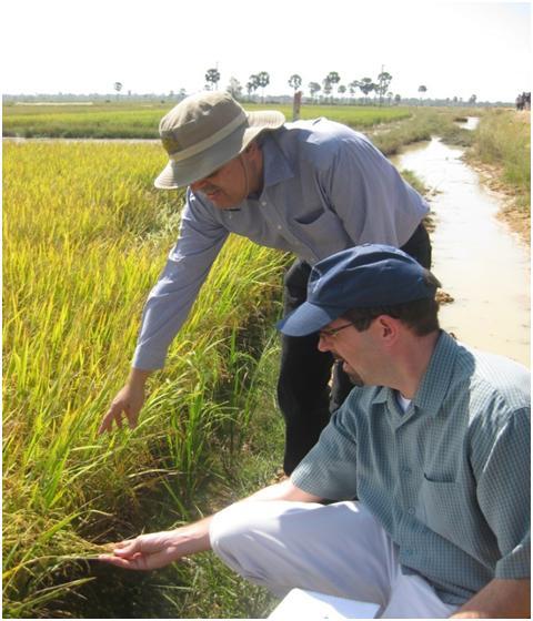 Chris Hegadorn and Ajay Markandray Inspect a Rice Paddy