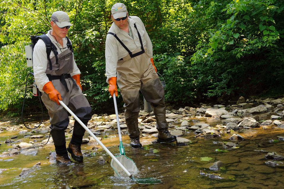 June 20, 2012 Stream sampling in West Virginia
