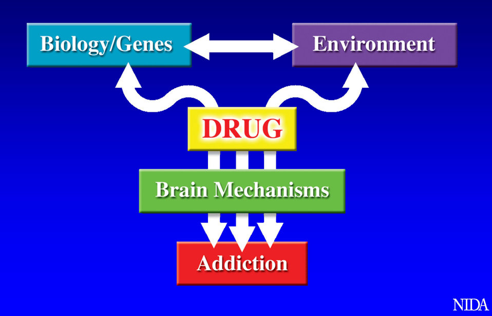 Addiction Factors