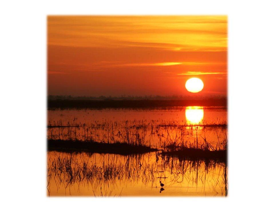 Orange sky sunset, Louisiana