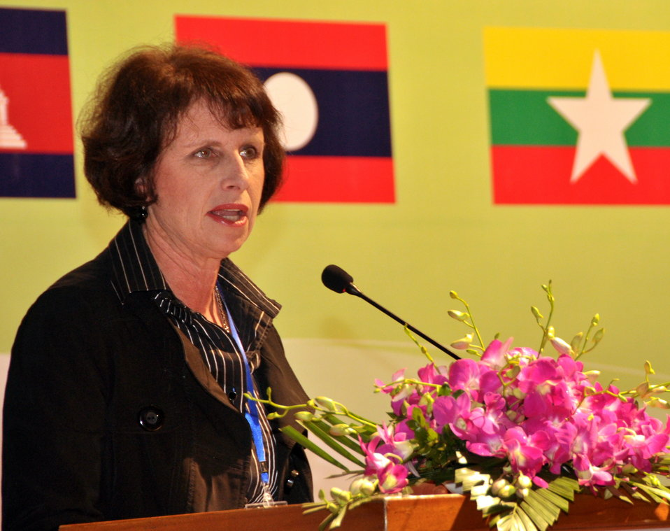 Ms. Lorraine Hariton, Special Representative for Commercial and Business Affairs, U.S. Department of State, gives remarks at the Lower Mekong Initiative Infrastructure Best Practices Exchange in Hanoi