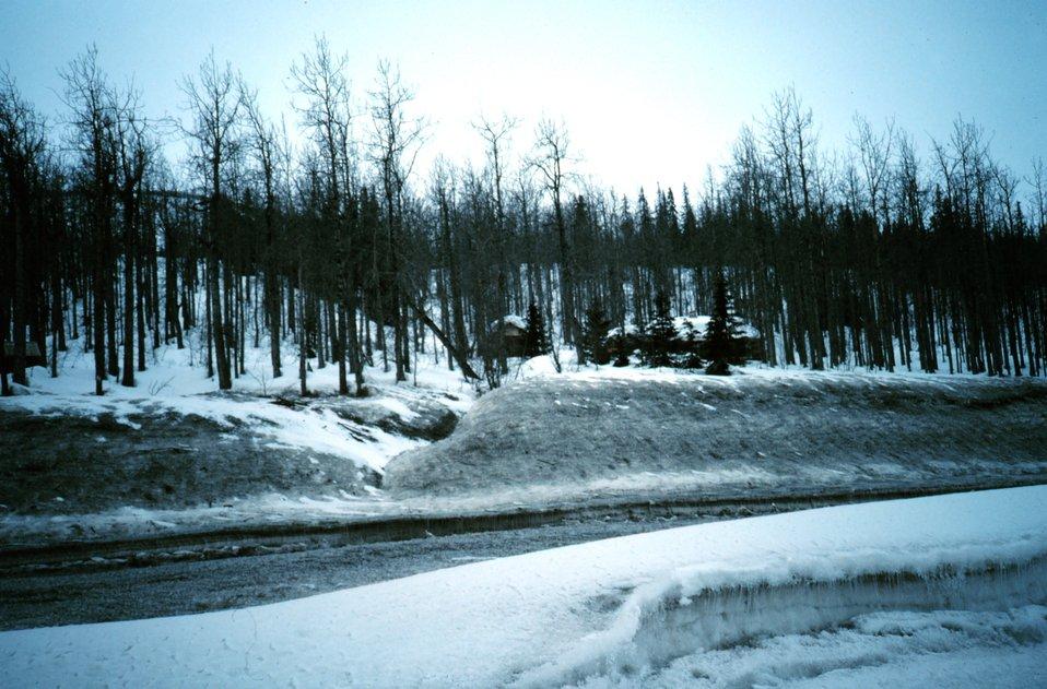 A scene along the Seward Highway
