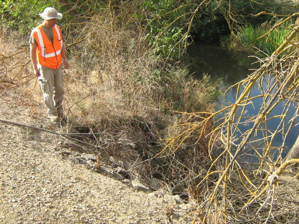Levee erosion in the Stockton area
