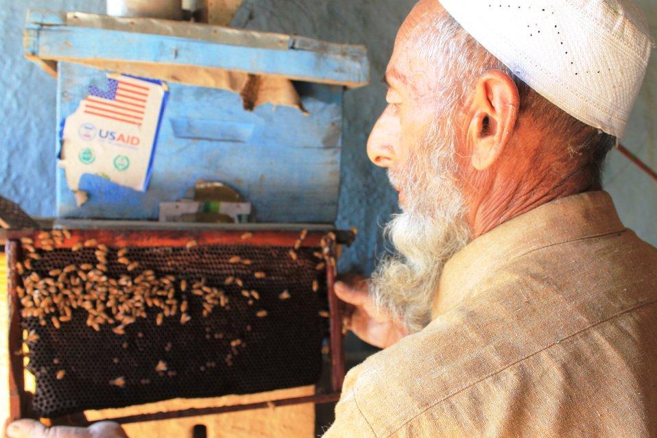 Honey Value Chain Development Initiative under the USAID's Entrepreneurs Project