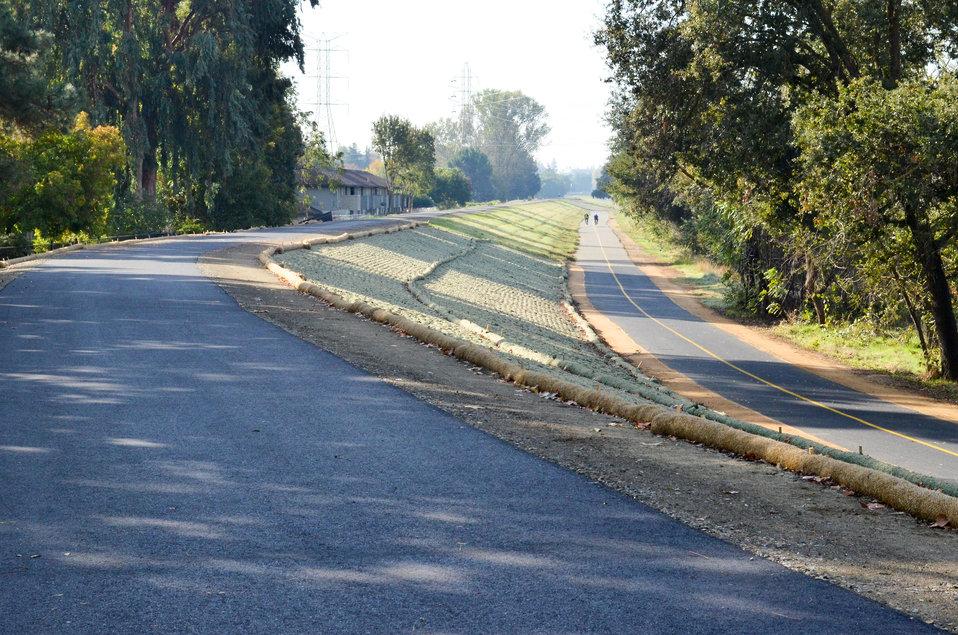 Nov. 9, 2011 American River Parkway Trail near the California State University-Sacramento campus
