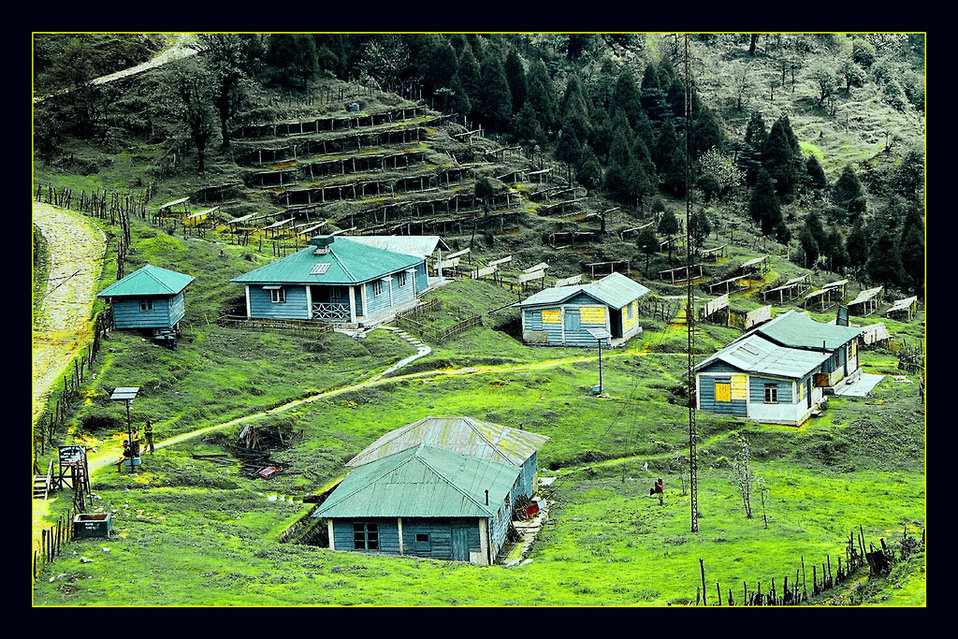 Uploaded by request of Deba Prasad Roy  Taken in Darjeeling District in the State of West Bengal, India    The name of the place is 'Gai