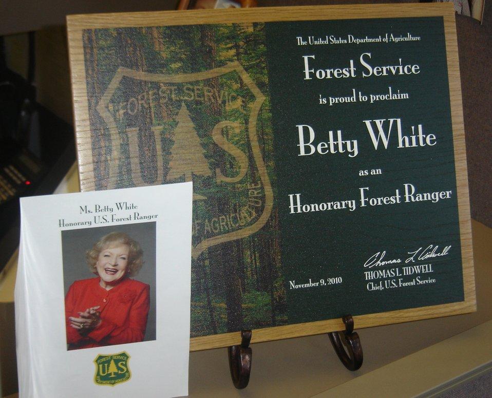 B White plaque-11-09-10