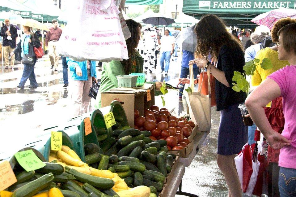 USDA Farmers Market Rainy Opening