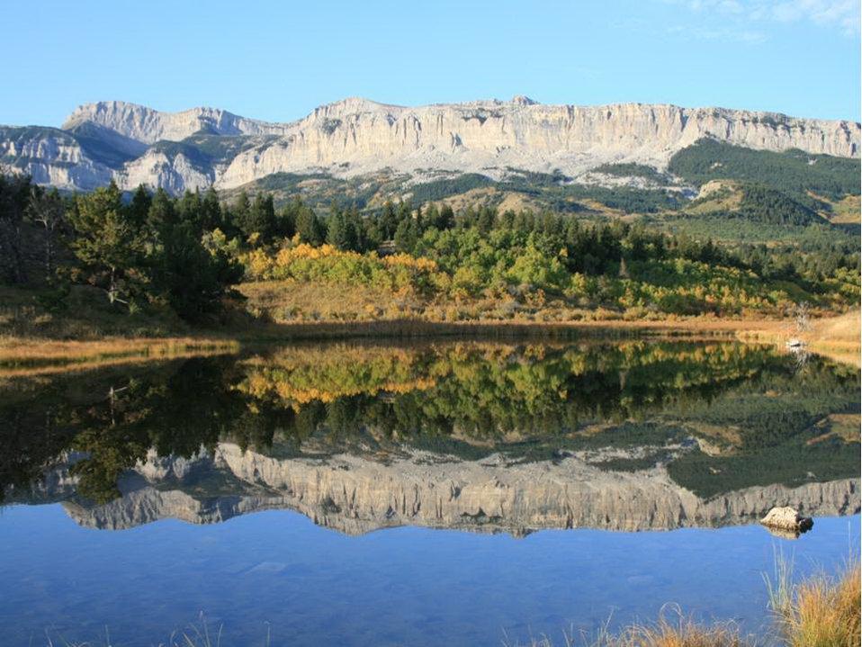 Restored Wetland