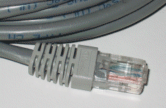 10BASE-T Cable. Picture taken by Duncan Lock and released into the Public Domain.