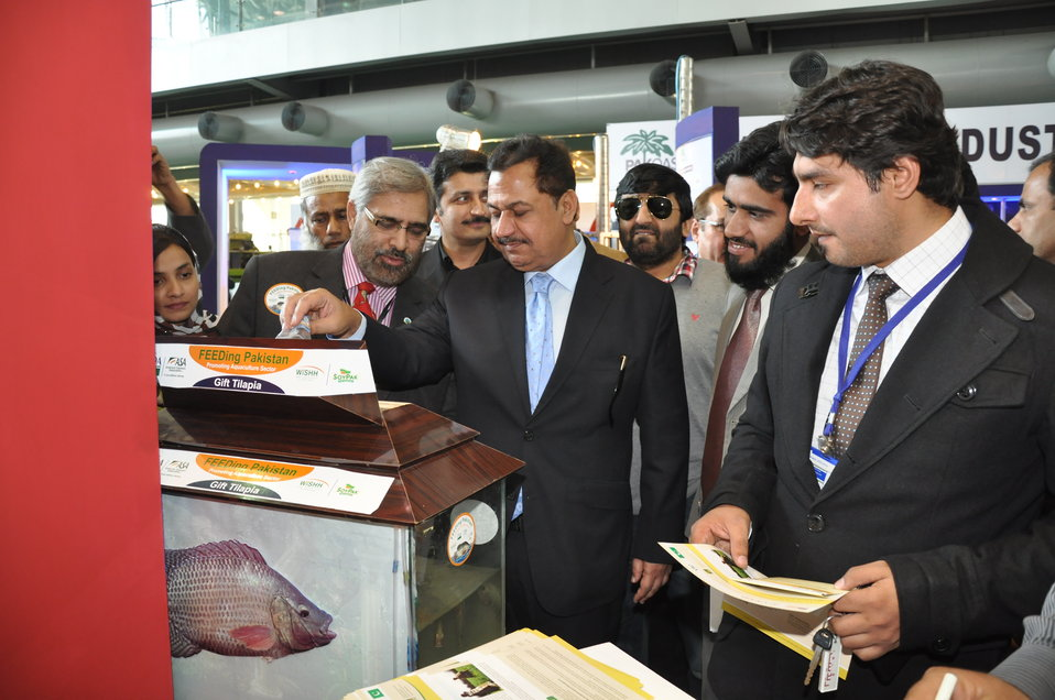 FEEDing Pakistan (Promoting Aquaculture Sector)