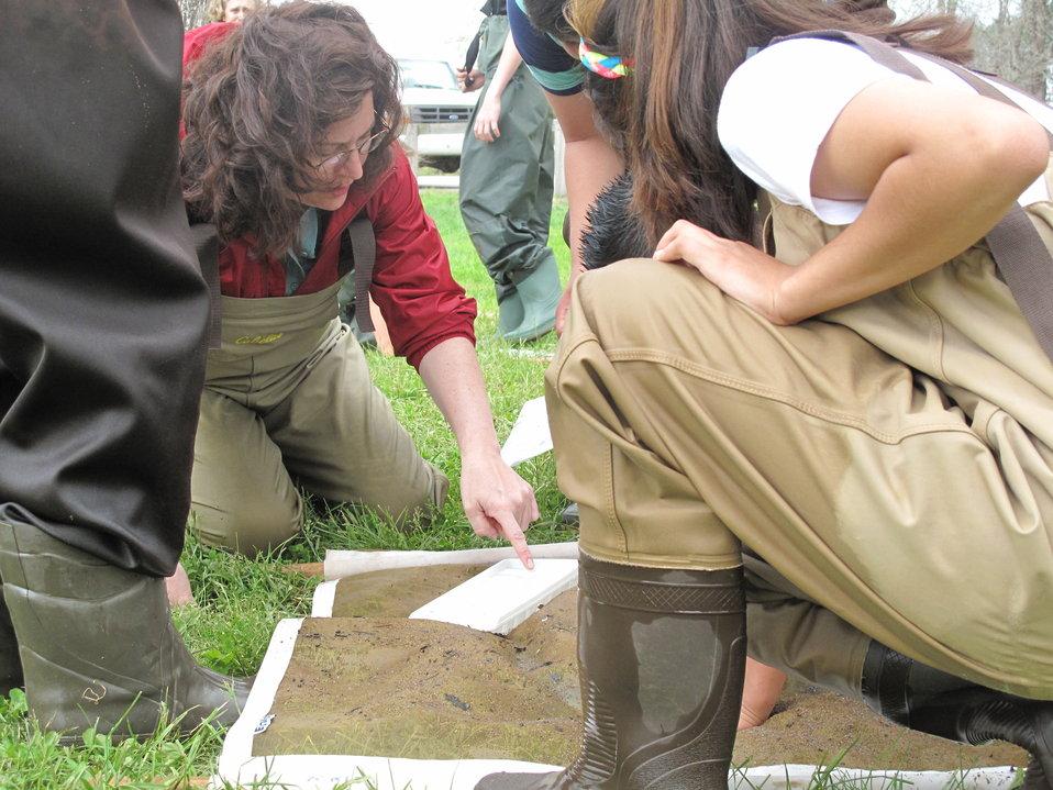 Janet Mizzi points out macroinvertebrates
