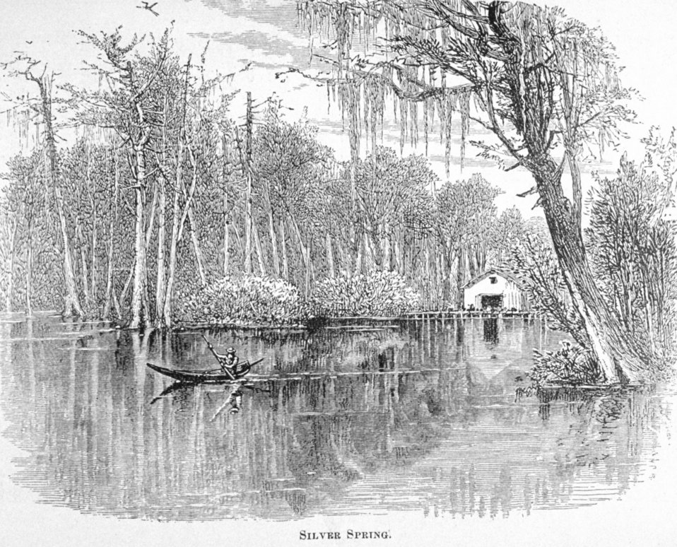Silver Spring -  in 'Florida for Tourists, Invalids, and Settlers'  by George M. Barbour, 1881.  Library Call No. F316 .B23 1881. A scene at the spring forming the headwaters of the Silver River, a tributary of the Ocklawaha,  which is tributary of the