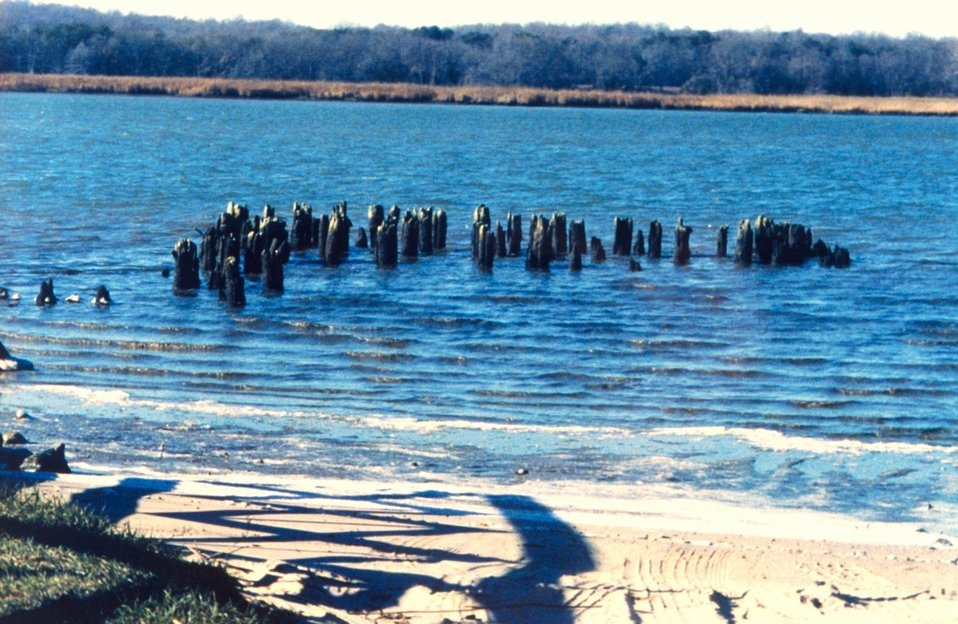 Pier pilings from the old Holland Cliffs Steamboat landing along the Patuxent River.