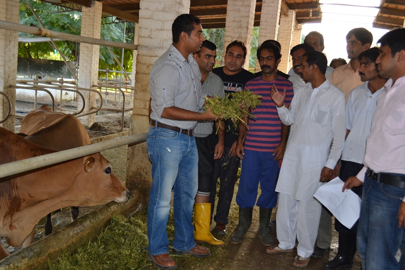 3 - First batch of Dairy Project farm manager trainees attending Farm Managers Training by USAId Dairy Project