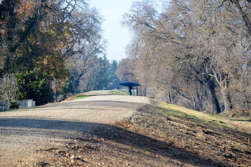 American River levee surveyed near Watt Avenue