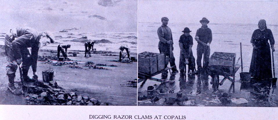 'Digging Razor Clams at Copalis.' In:  'Puget Sound and Western Washington  Cities-Towns Scenery', by Robert A. Reid, Robert A. Reid Publisher, Seattle, 1912.  P. 159.