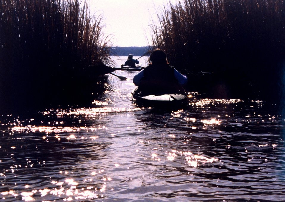 Paddling through the Patuxent marshes on a bright winter's day.  Sun glint sparkles on the water.