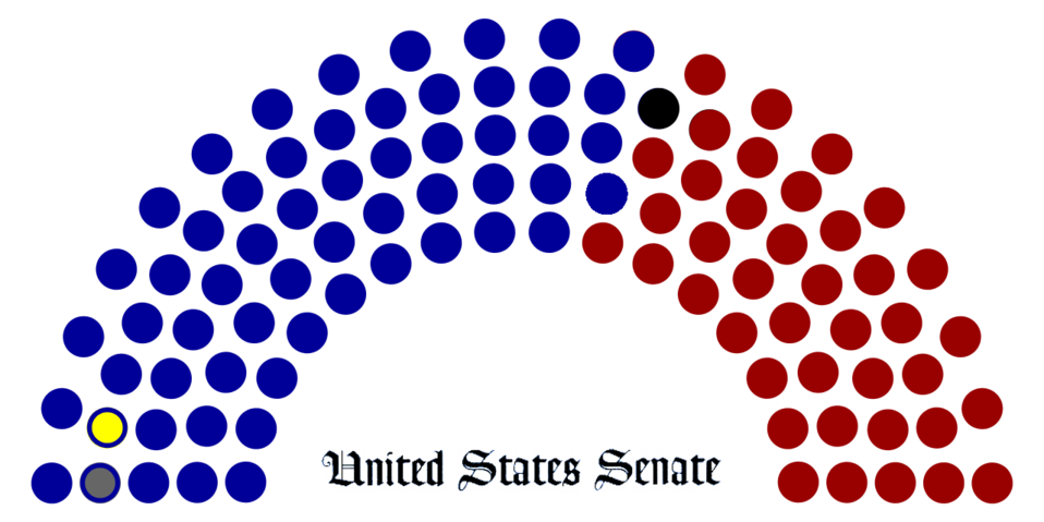 Breakdown of political party representation in the United States Senate during the 111th Congress.