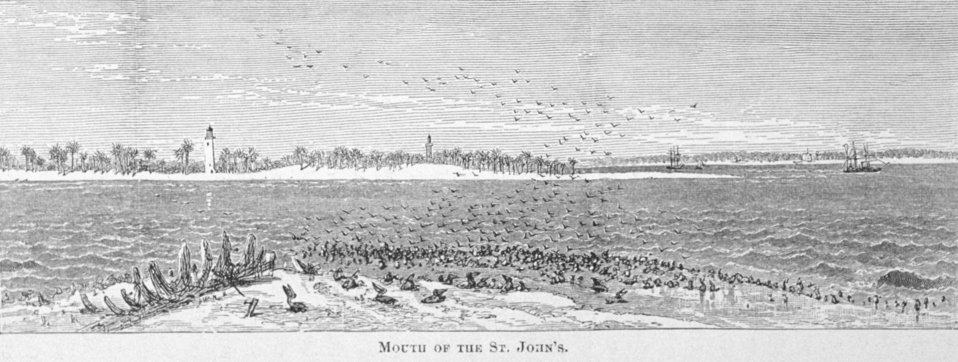 Mouth of the St. John's River - in 'Florida for Tourists, Invalids, and Settlers ' by George M. Barbour, 1881.  Library Call No. F316 .B23 1881. The lighthouse is the St. Johns River Lighthouse, built in 1859, and near present-day Mayport.