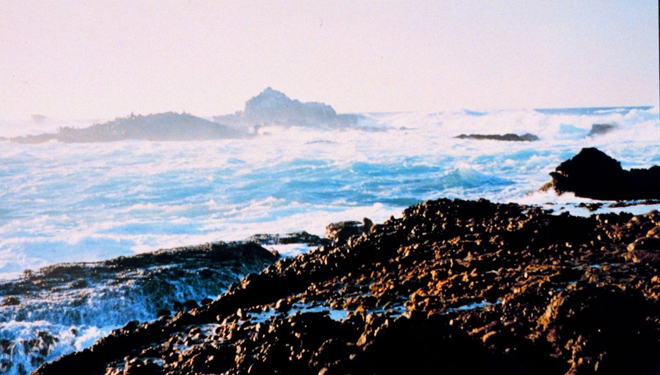 Surf, rock, and spray define Point Lobos.