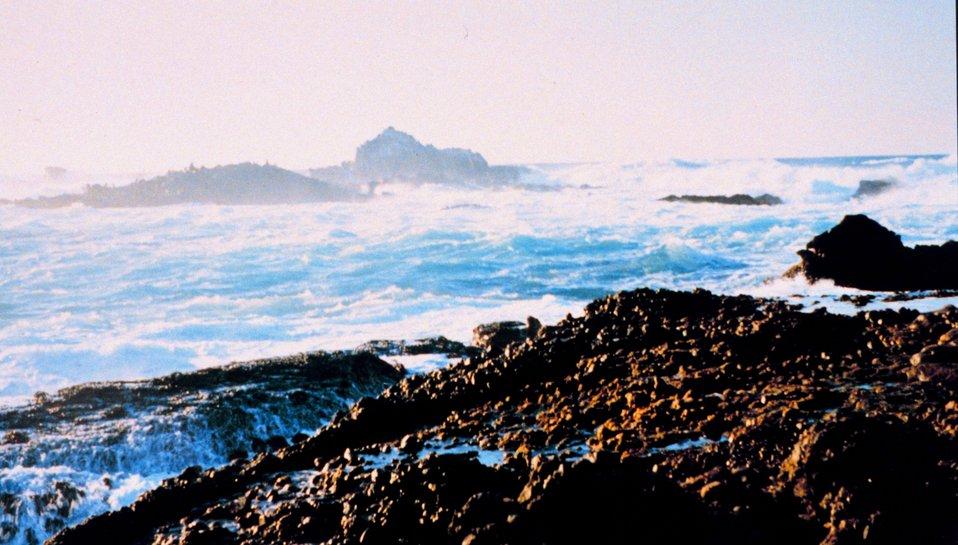 Surf, rock, and spray define Point Lobos.