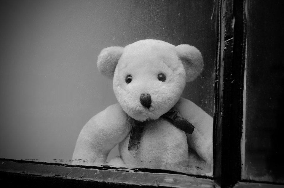 Teddy bear behind a window