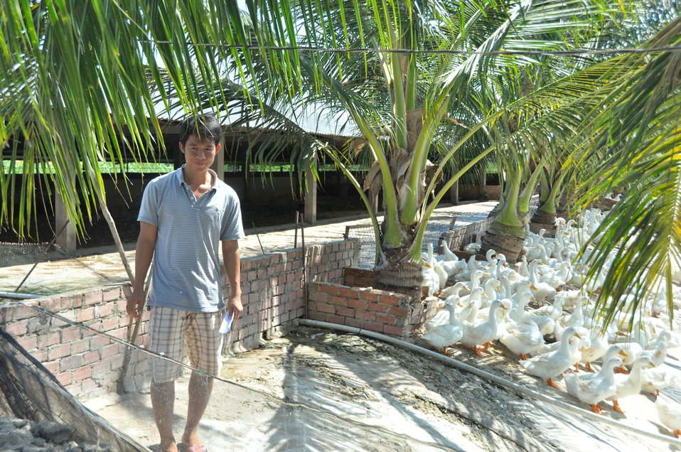 Mr. Thien at his duck farm in Can Tho