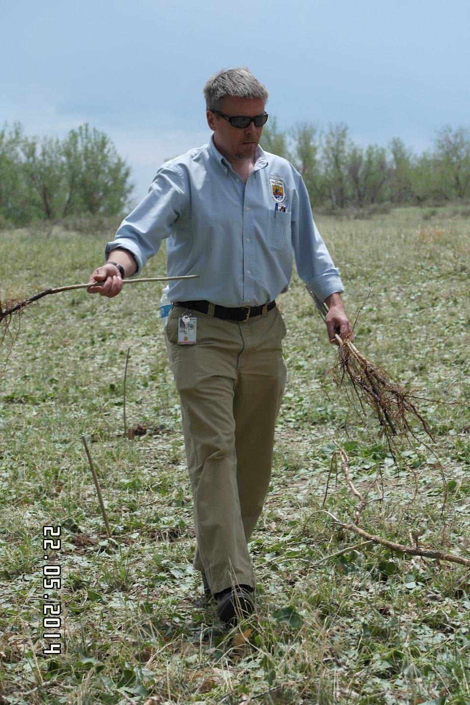 Deputy Regional Director Matt Hogan Planting Trees