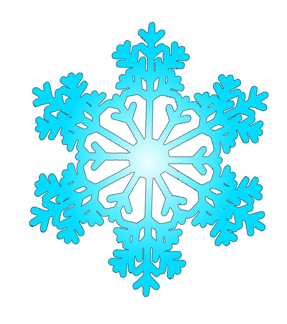 snow flake 6