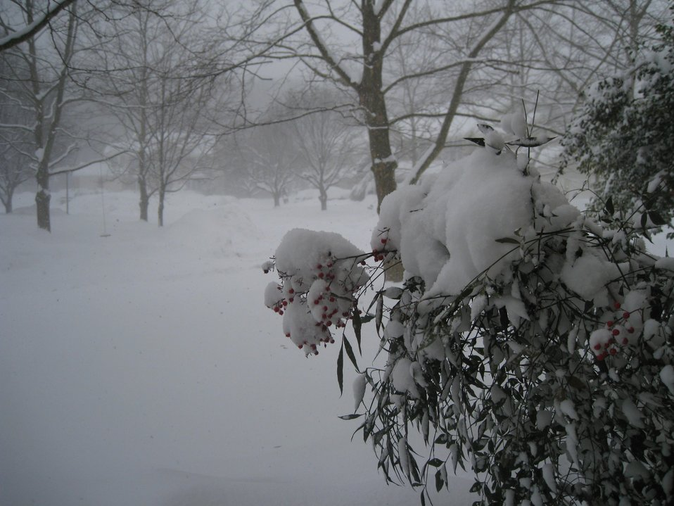 The third great storm of the winter of 2009/2010.  This storm was a true blizzard with sustained winds of 35 mph or greater over much of the Mid-Atlantic  region and areas acquiring for the third time between 1 and 3 feet of snow. About 10 miles north of