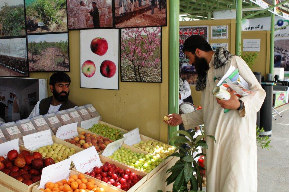2009-May Kabul AgFair fruit vendor