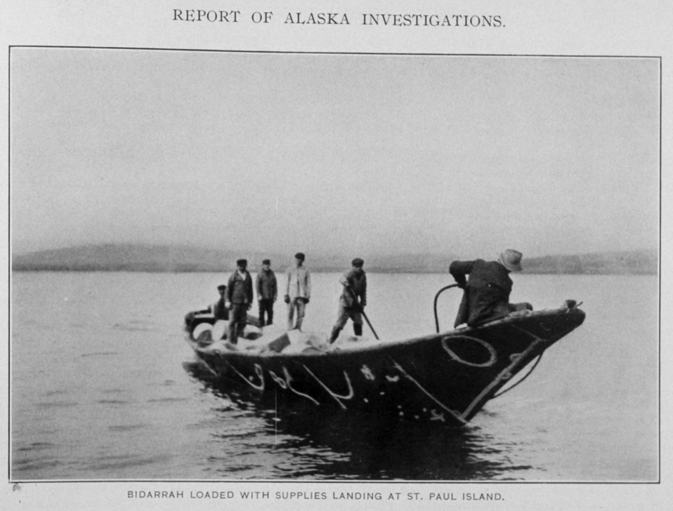 Bidarrah Loaded with Supplies Landing at St. Paul Island.  In: 'Report of Alaska Investigations,' by E. Lester Jones, p. 140, 1914.  Department  of Commerce, Bureau of Fisheries.  Library Call No. 639: 945 J77.