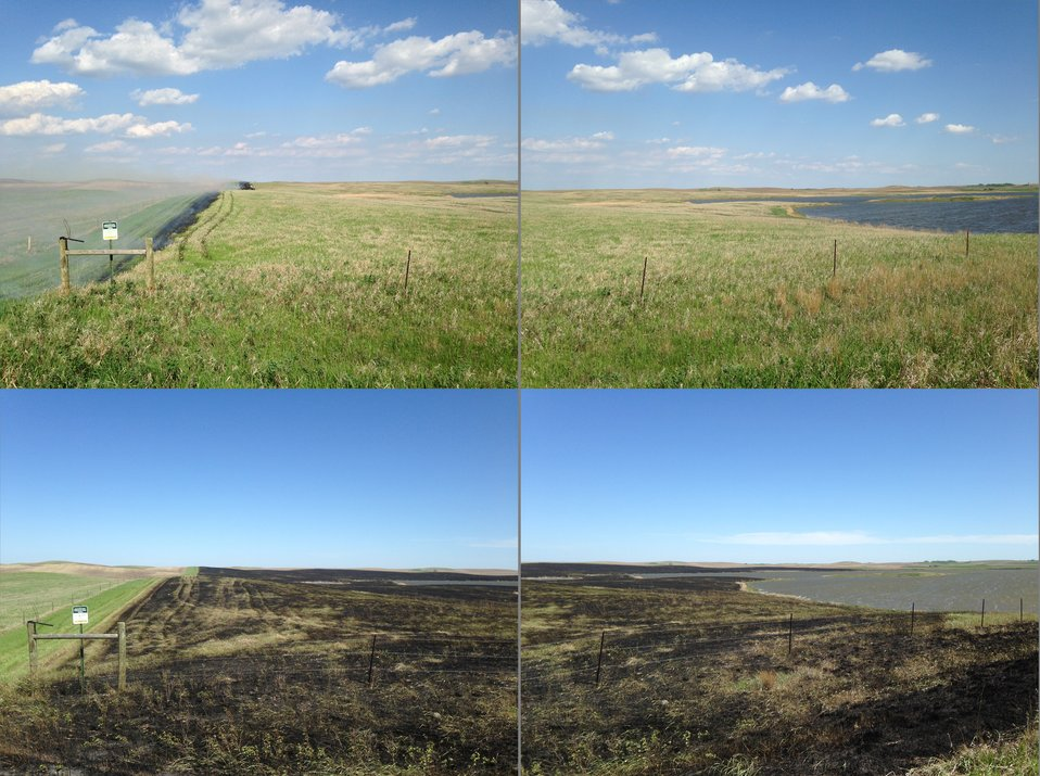 Knecht WPA Prescribed Fire: Before and After