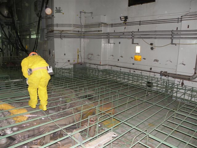 P Reactor