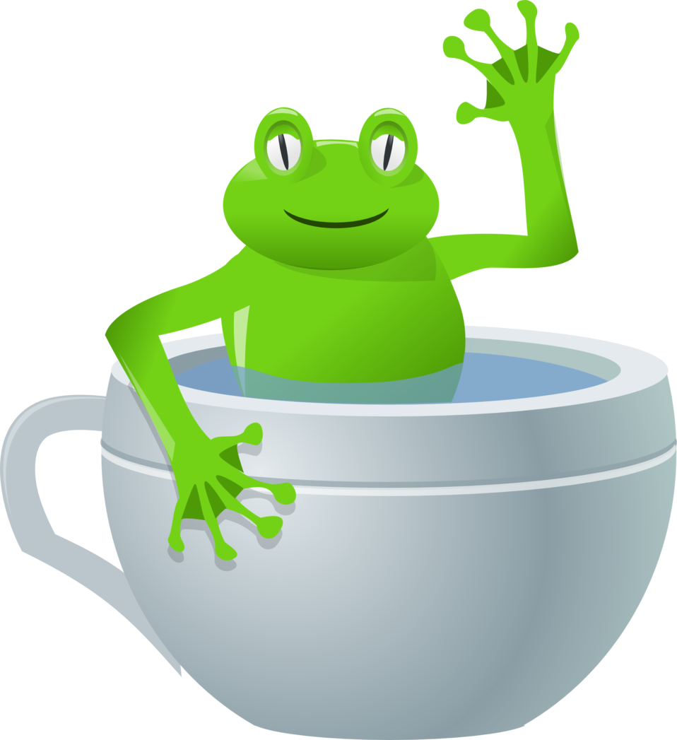 unexpected frog in my tea