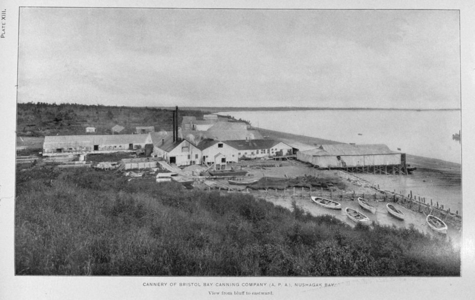 Cannery of Bristol Bay Packing Company (A.P.A.) Nushagak Bay.  In: 'Alaska Salmon Investigations,' by Jefferson F. Moser, p. 202, 1902.  Washington , Government Printing Office.  Library Call No. G945 M98.