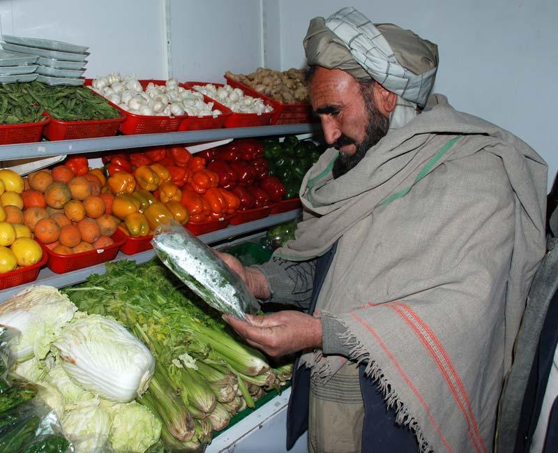 Badam Bagh Produce - ASAP