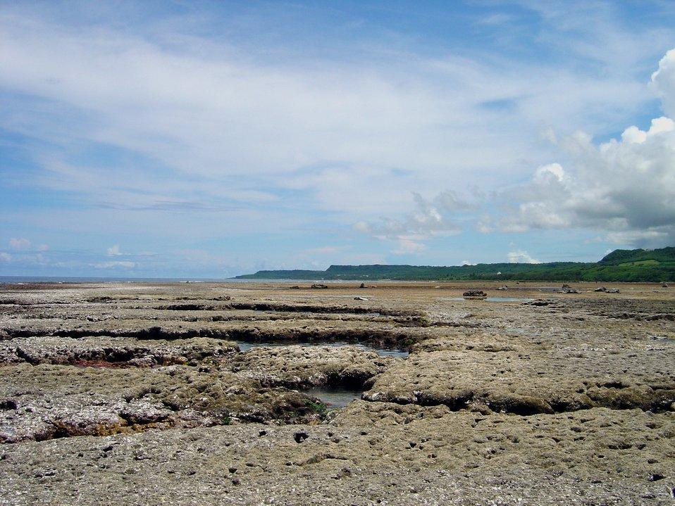 Brown algae in channels while reef flat appears devoid of growth at low tide on Guam coastline.