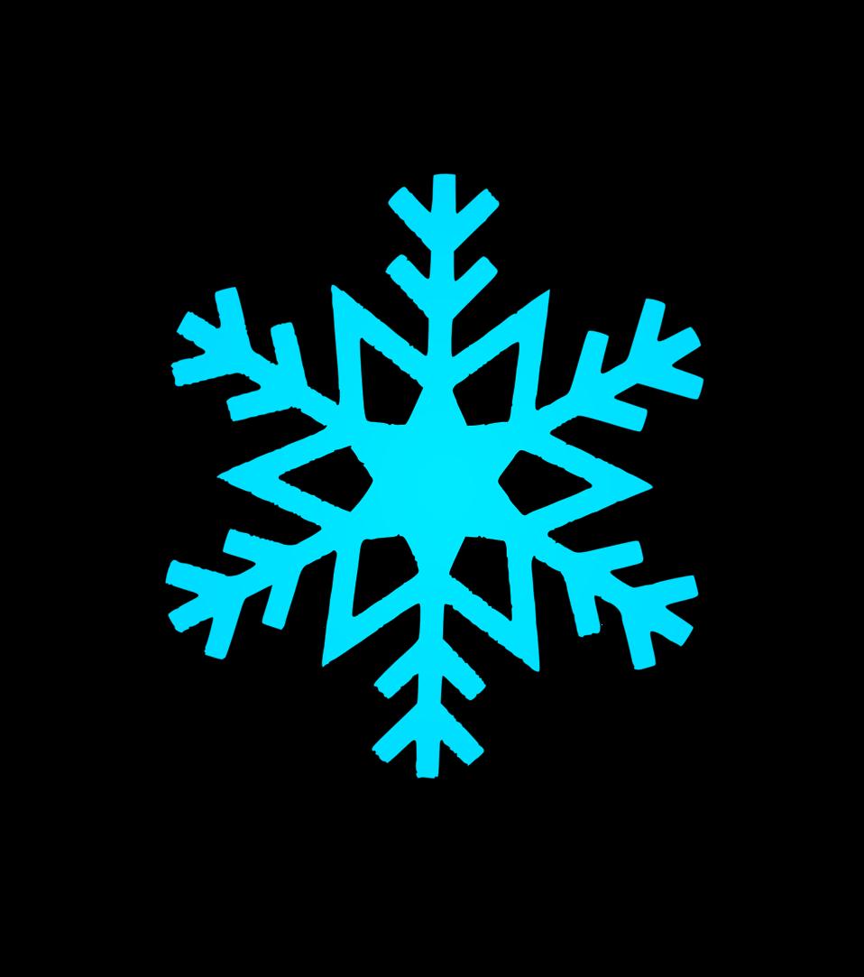 snow flake 5