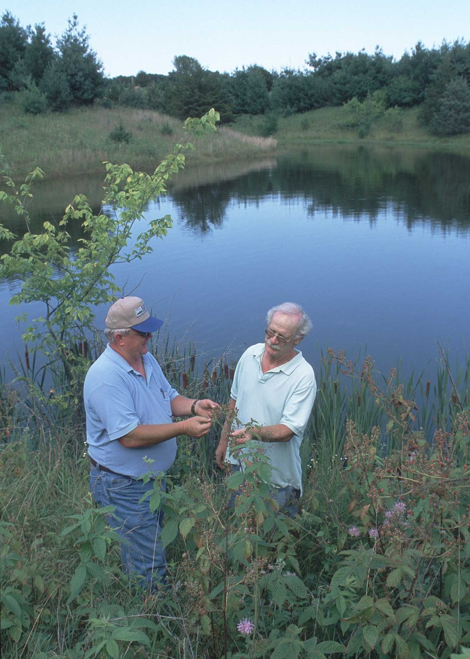 A well-designed farm pond with surrounding wildlife habitat was planned with NRCS assistance to offer excellent recreation in rural Van Bure