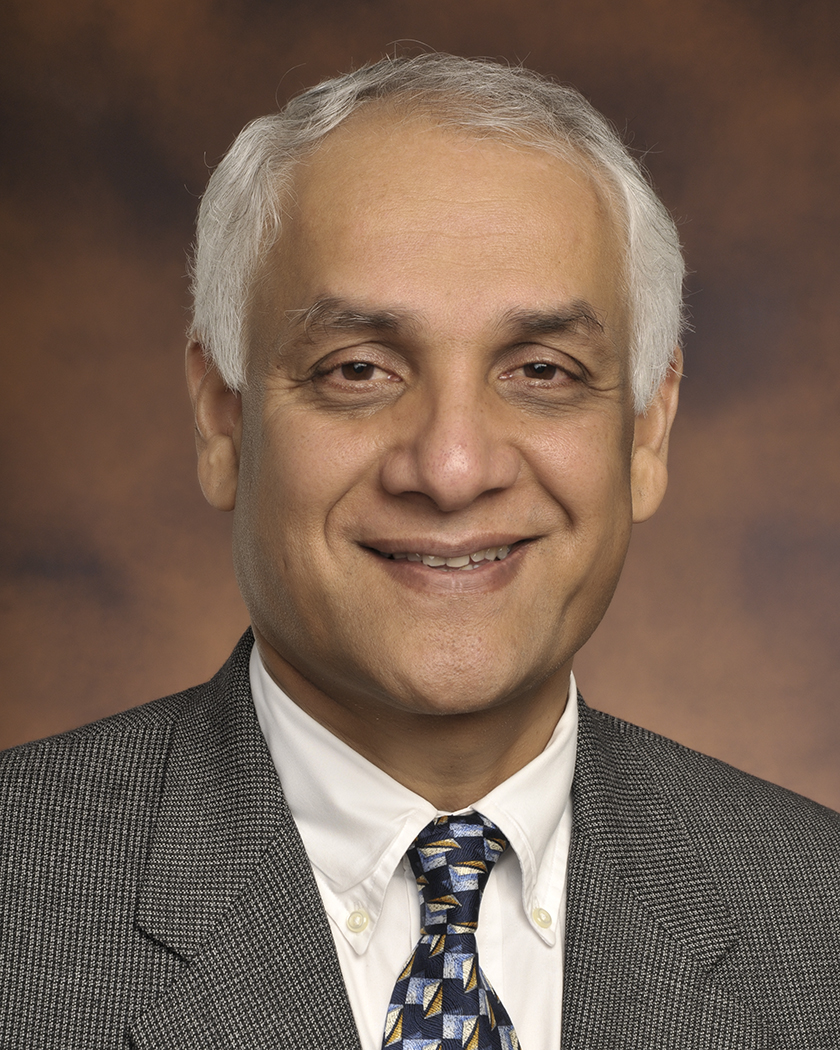 ARPA-E Deputy Director for Technology Pramod Khargonekar