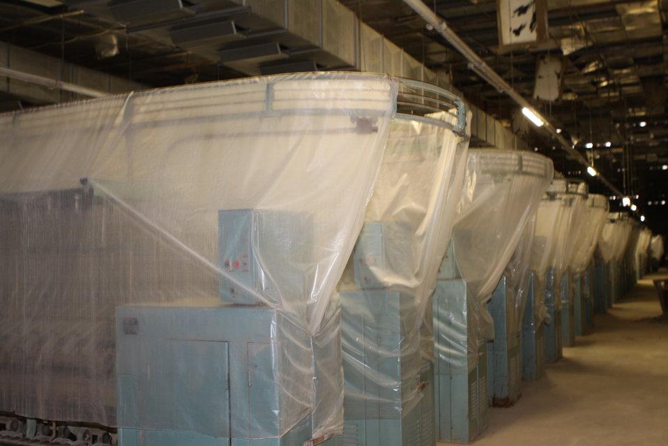 100525 Hirat Textile Company 727