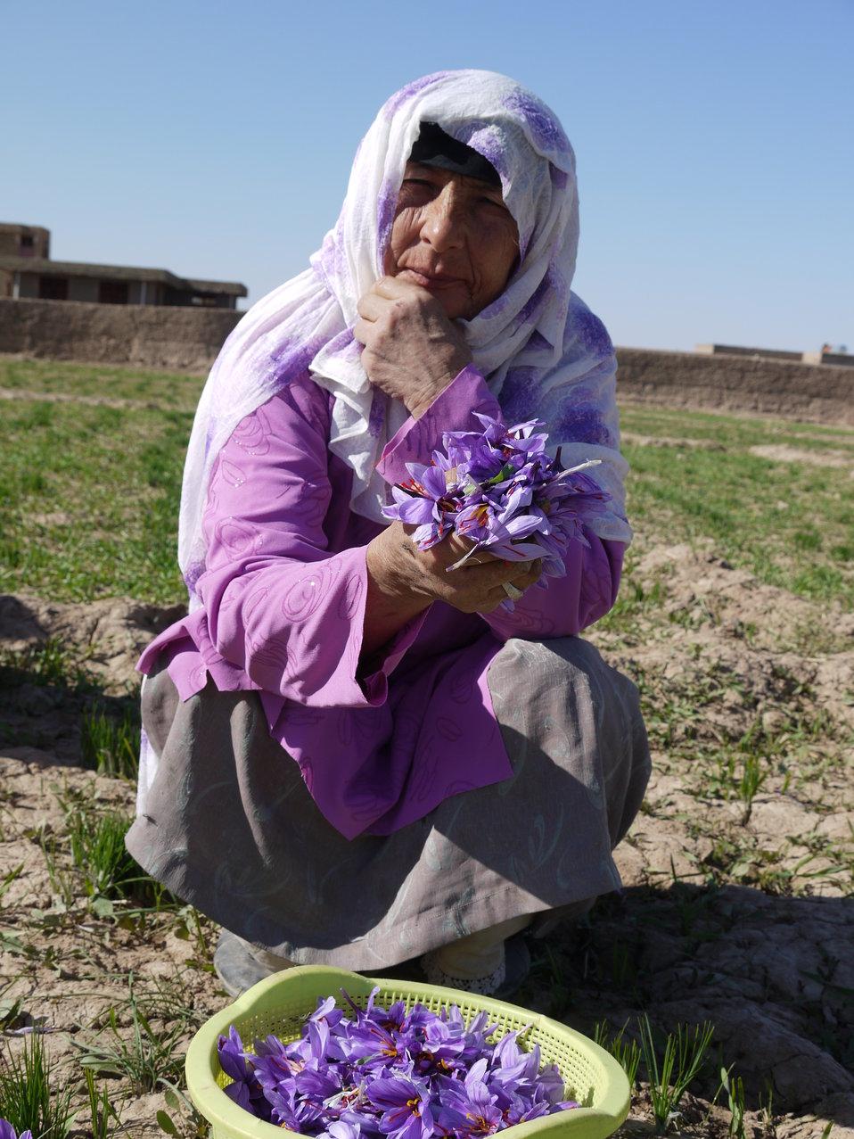 Ghoryan Women Saffron Association